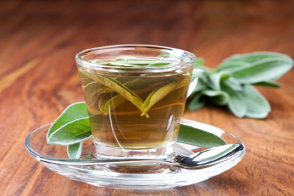 5 рецептов от болезней огурцов