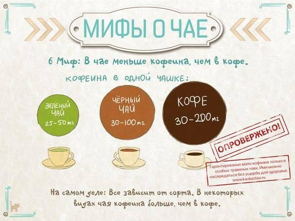 Есть ли кофеин в зеленом чае? сравнение по количеству содержания с кофе и черным чаем, где больше, сколько содержит и как уменьшить