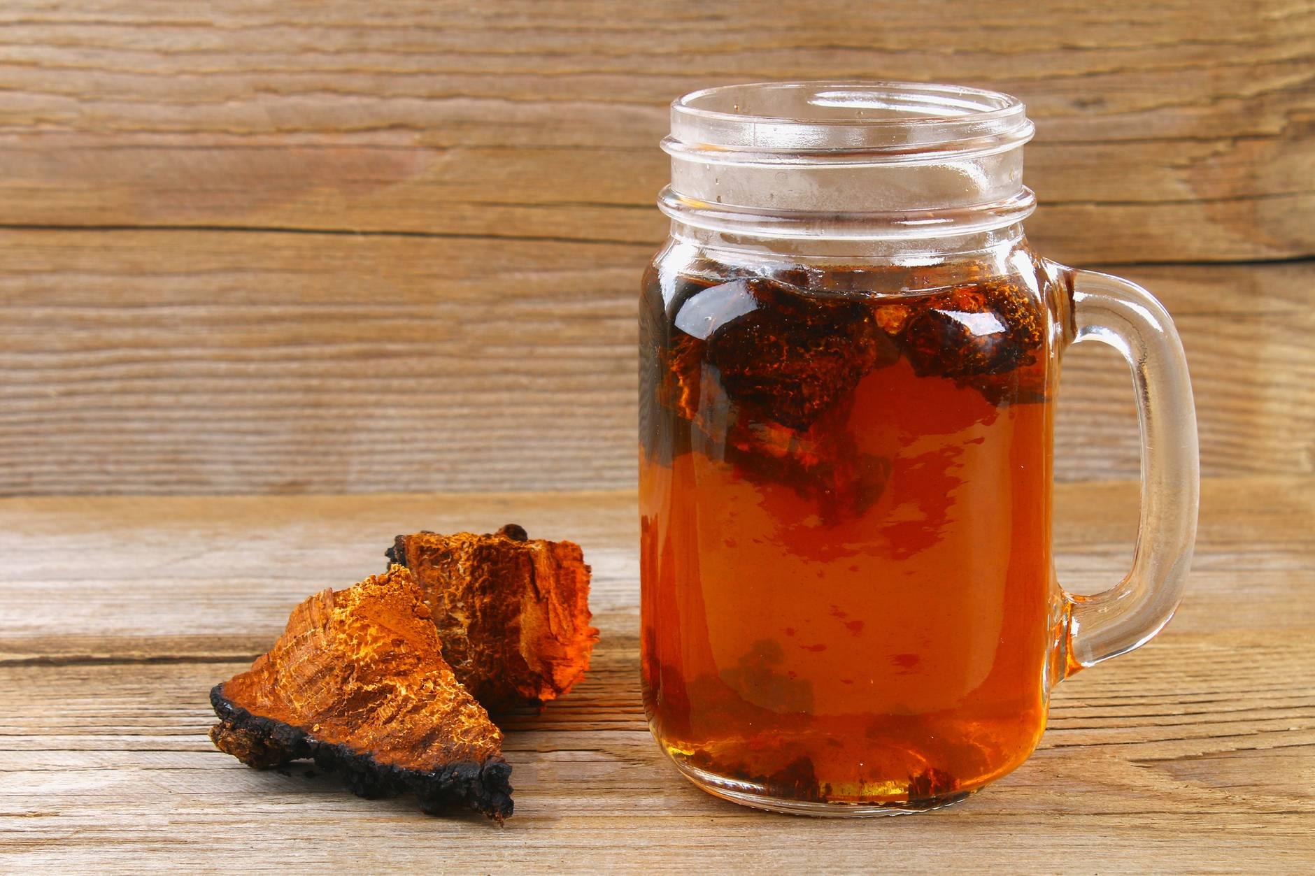Чай чага: как правильно заваривать и пить чагу