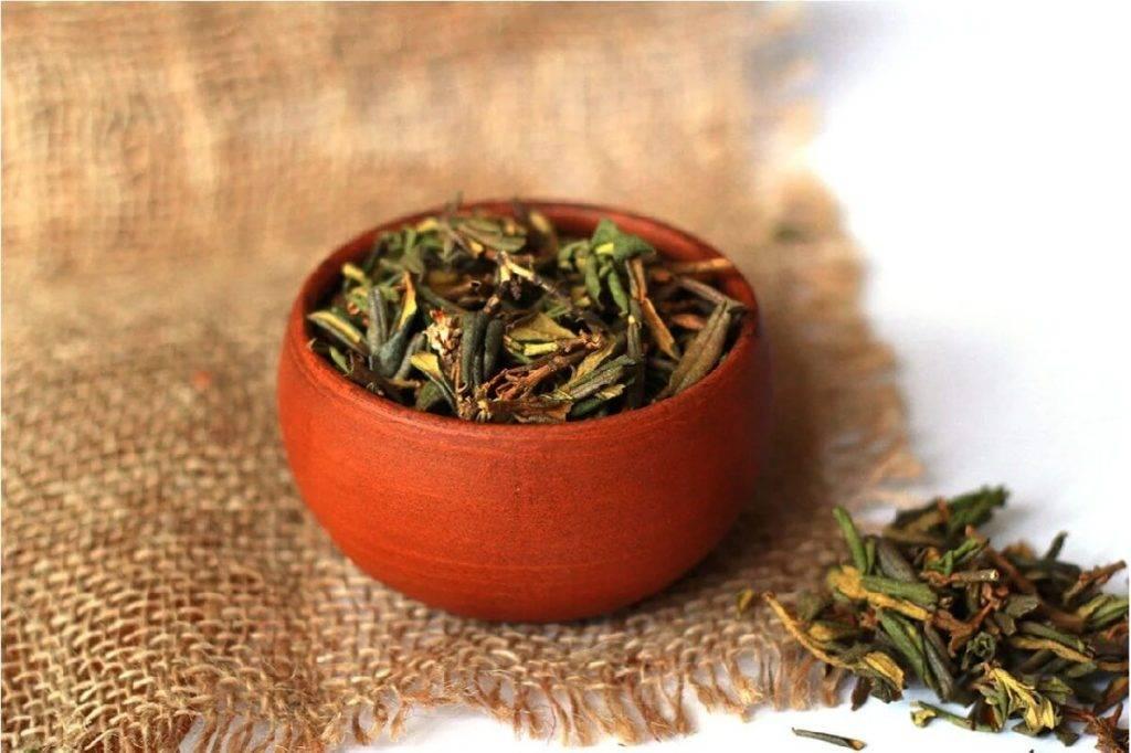 Лечебные свойства травы саган дайля