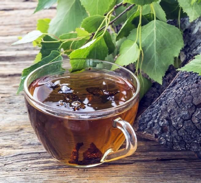 Чай из малиновых веток — лечебные свойства, как заваривать