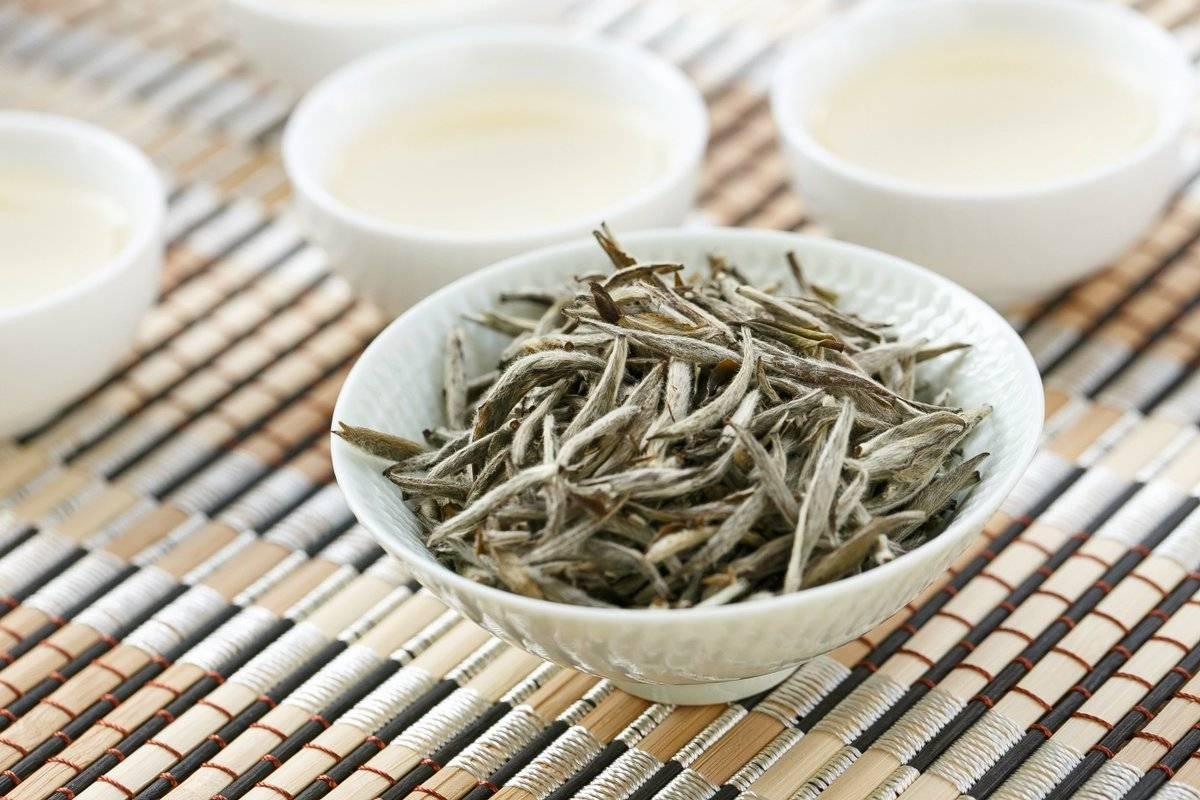 В чем польза белого чая?