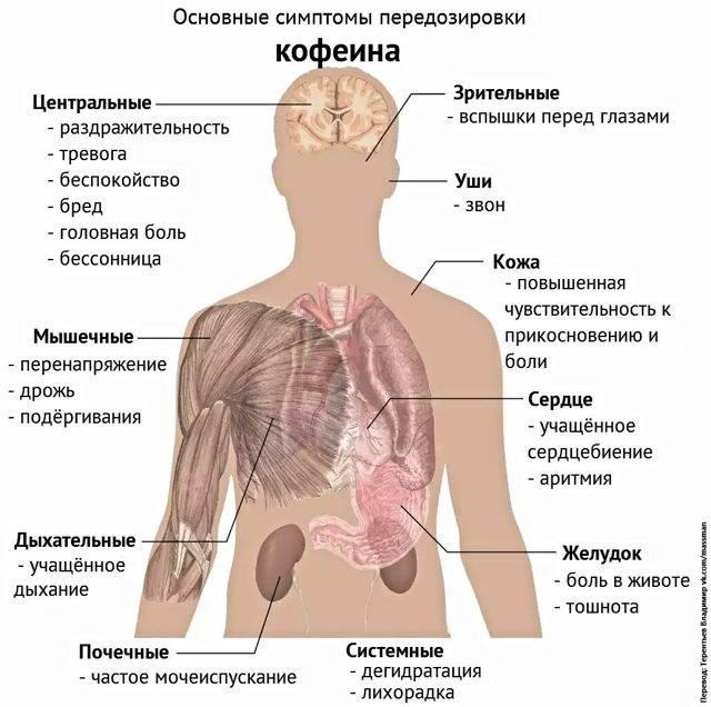 Смертельная доза кофе для человека: передозировка кофеином отравление.ру смертельная доза кофе для человека: передозировка кофеином
