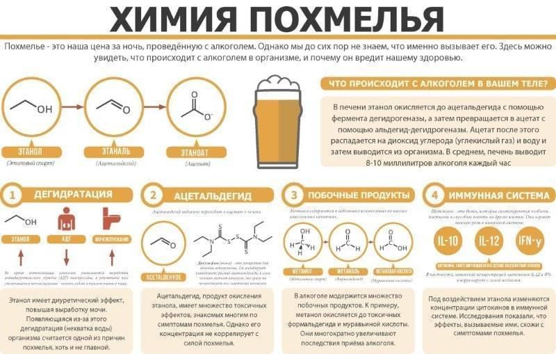 Можно пить кофе после алкоголя сразу или на следующий день