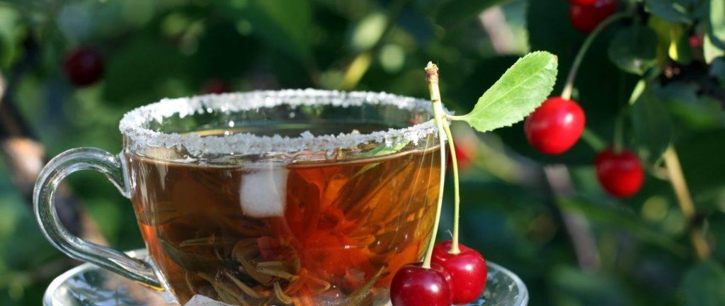 Польза и вред чая из листьев вишни