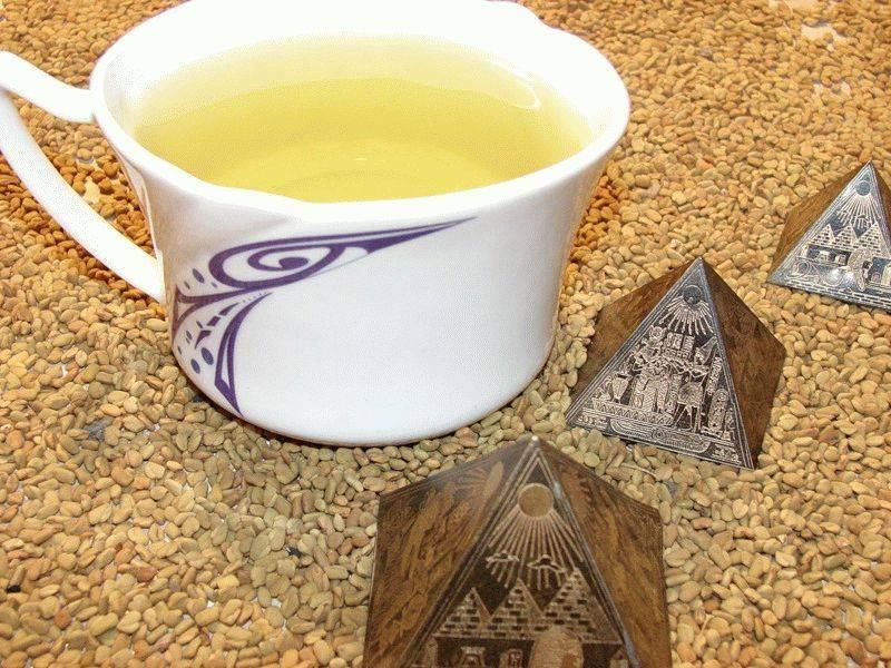 Желтый египетский чай хельба - полезные свойства, как заваривать