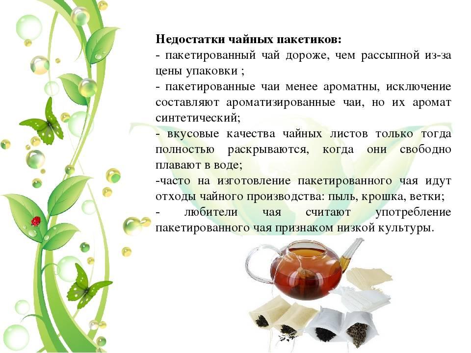 Лечебные свойства и противопоказания клевера лугового, чем полезен и применение