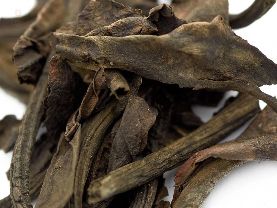 Бадан, лечебные свойства и противопоказания