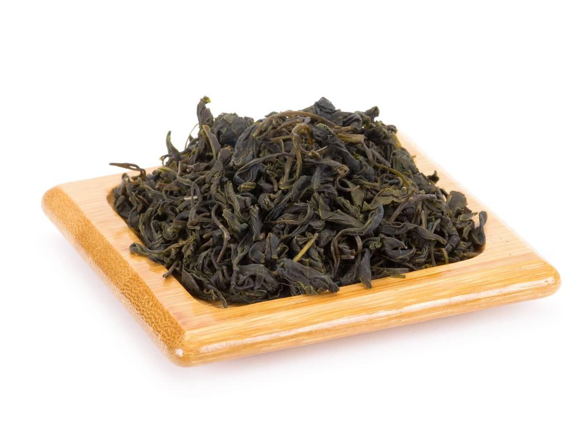 Чай кудин — польза и вред для здоровья