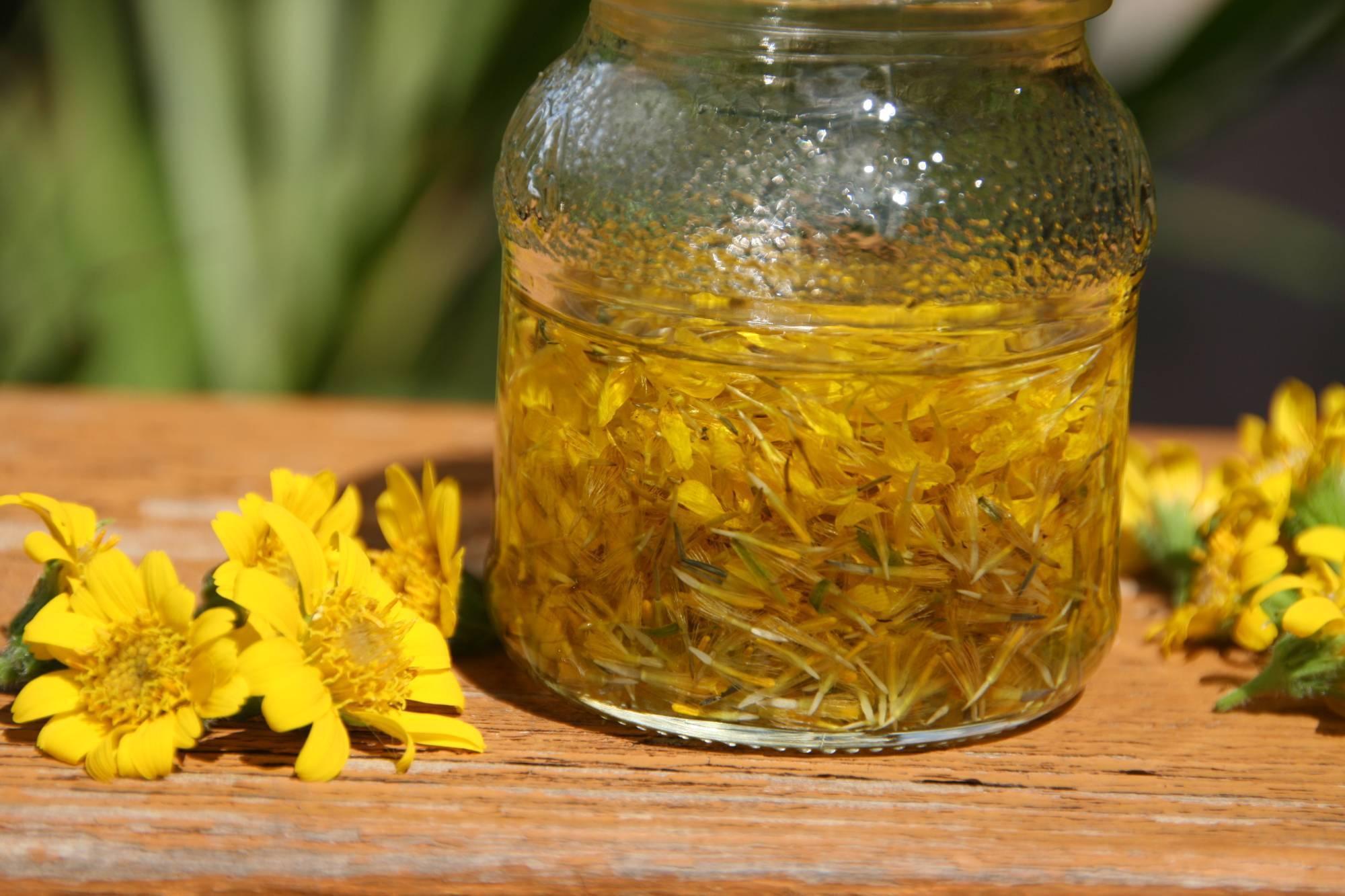 Листья хрена в народной медицине – целебные свойства растения