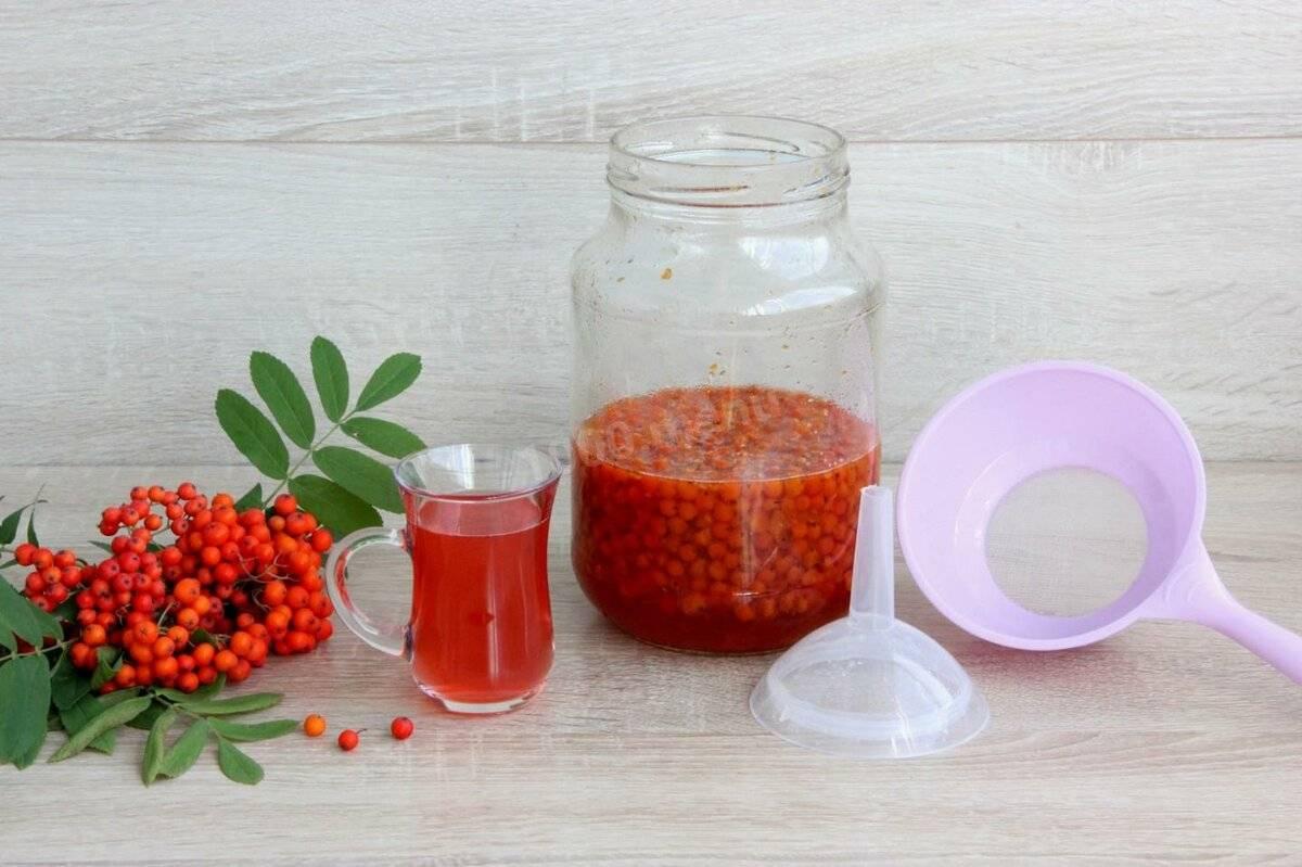 Чай с рябиной красной: полезные свойства и рецепты
