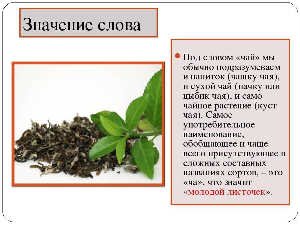 Хороший чай: какой выбрать и как, рейтинг самых популярных