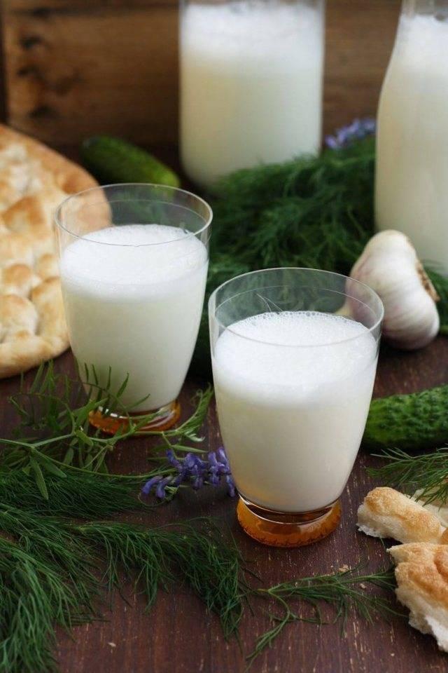 В чем заключается польза кисломолочных продуктов. бывает ли вред от кисломолочных продуктов, как их правильно выбирать - автор екатерина данилова - журнал женское мнение
