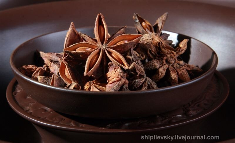 Бадьян звездчатый: фото, полезные свойства и противопоказания, рецепты чая