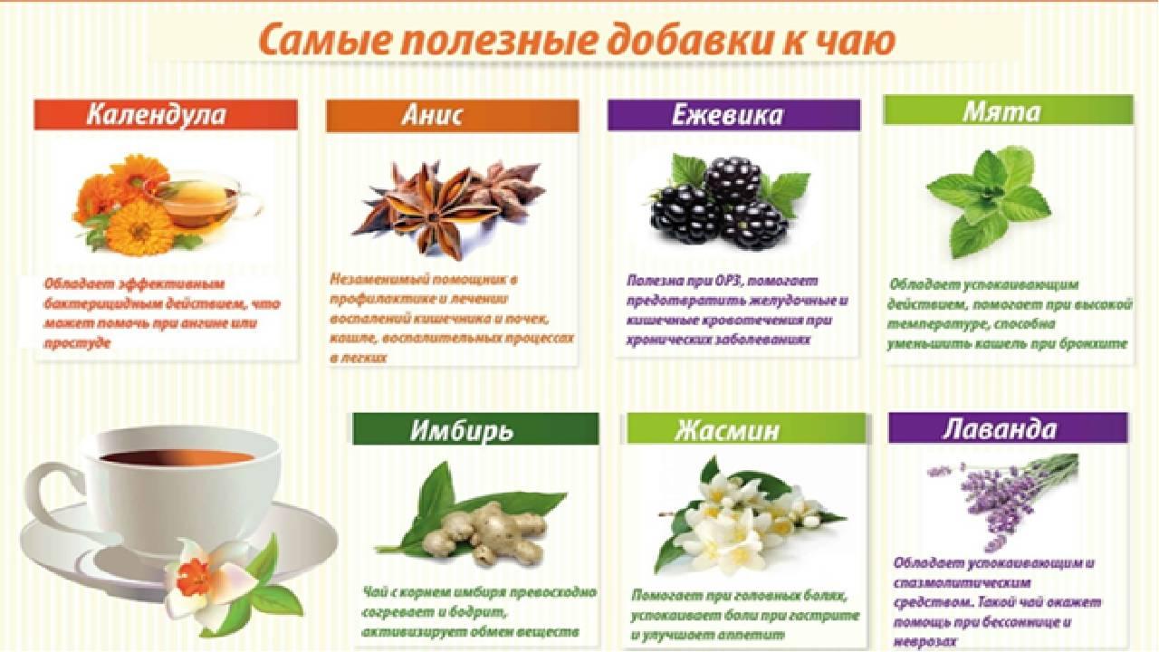 Зеленый чай для похудения: вкусно, ароматно, эффективно