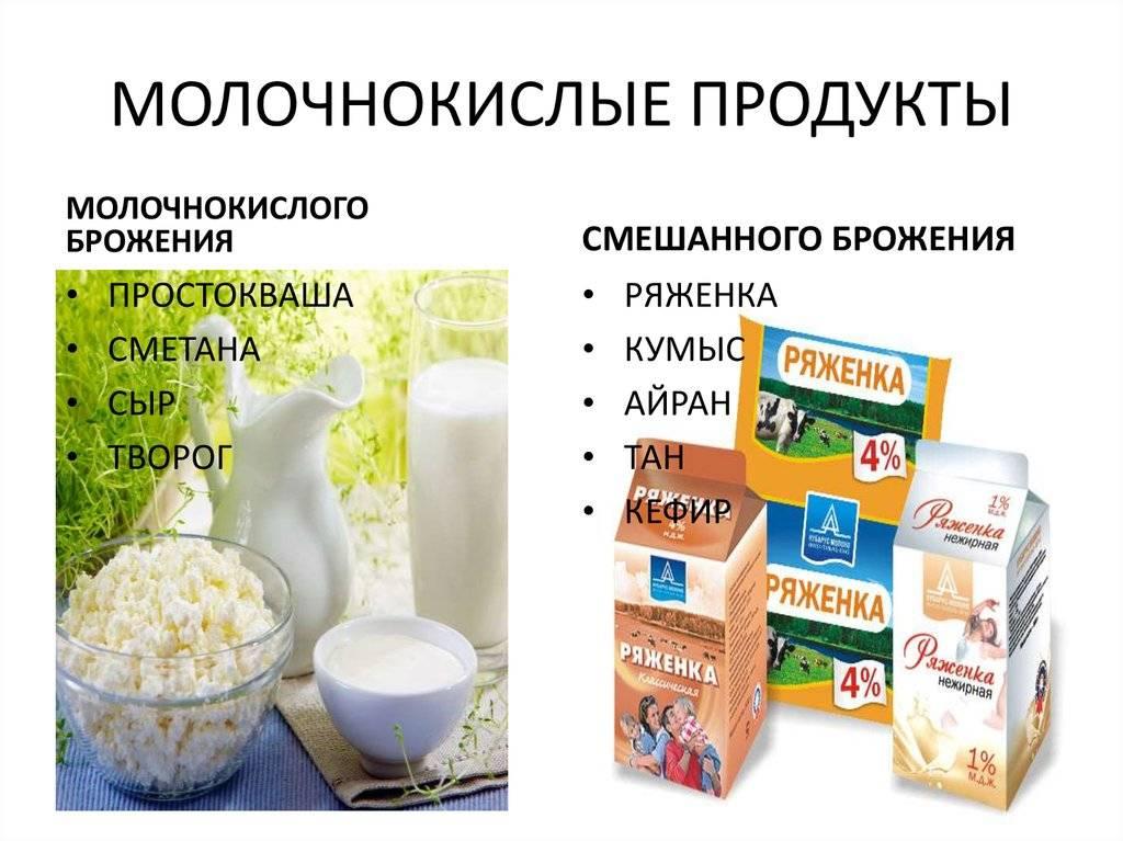 Что полезнее для здоровья молоко или простокваша | польза и вред