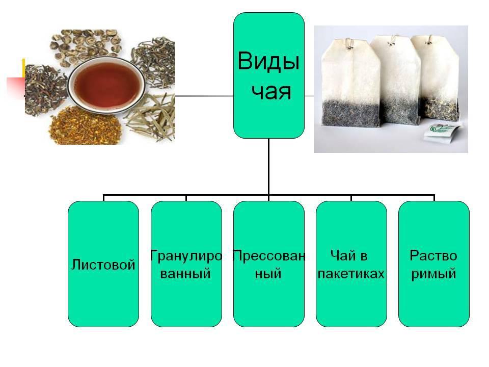 Какие бывают сорта чая?