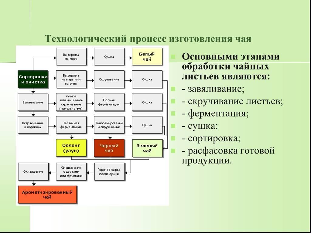 Как делают чай: этапы производства