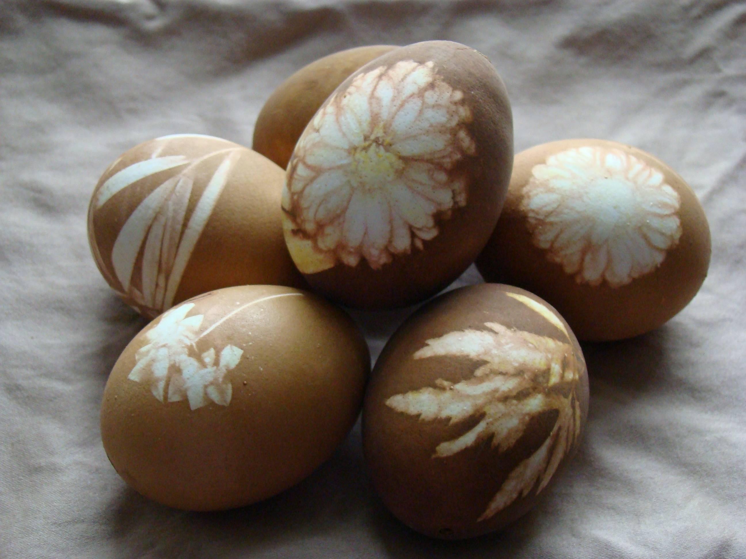 Как покрасить яйца чаем или кофе