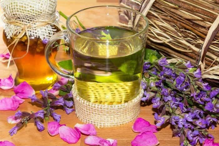 Чай с шалфеем: польза и вред, как пить (рецепты)