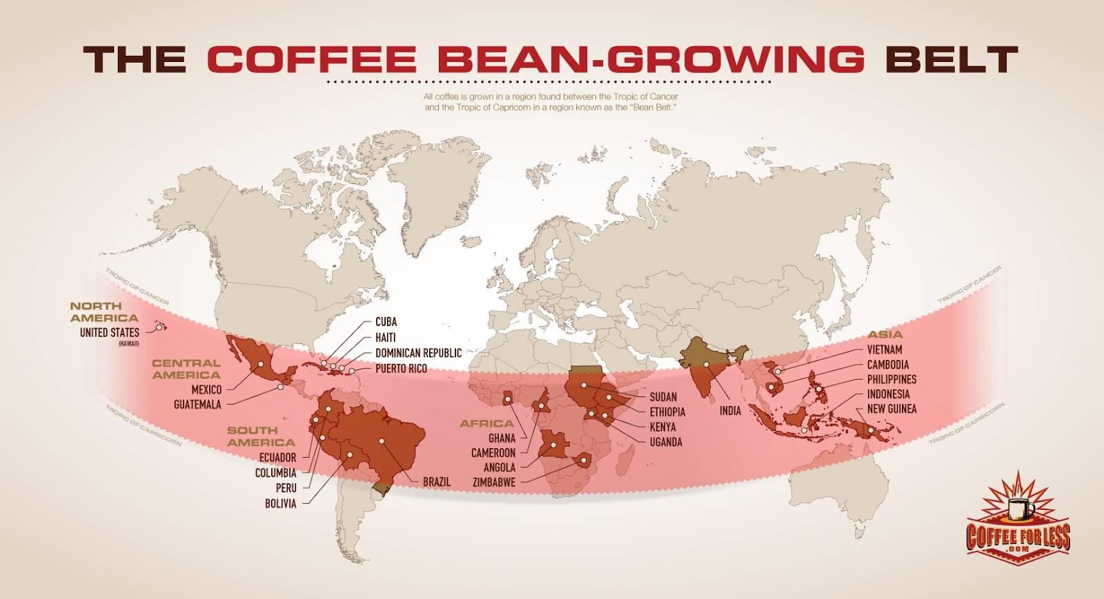 5 стран, где делают лучший кофе в мире