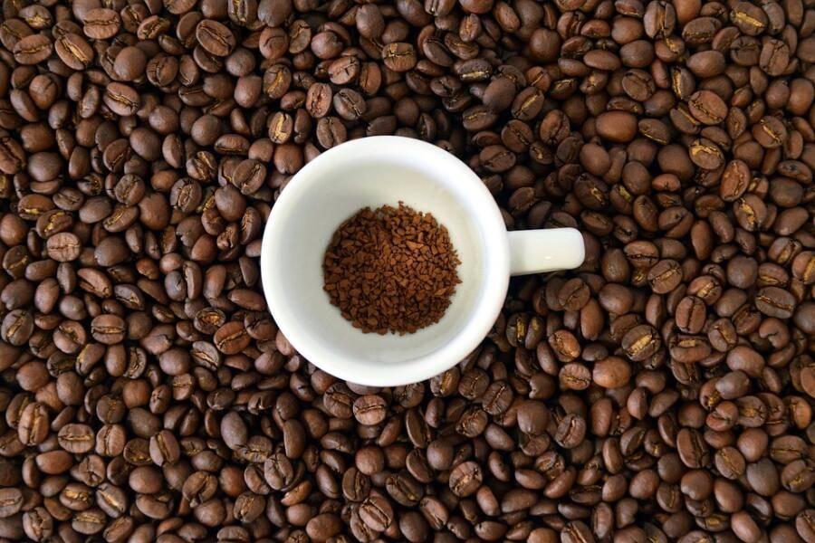 Сколько времени нужно для созревания сырого кофе. деревце кофе: от посева зерна до сбора плодов. сроки и методика сбора урожая