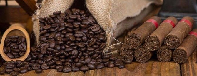 Мексиканский кофе: особенности, сорта, известные марки