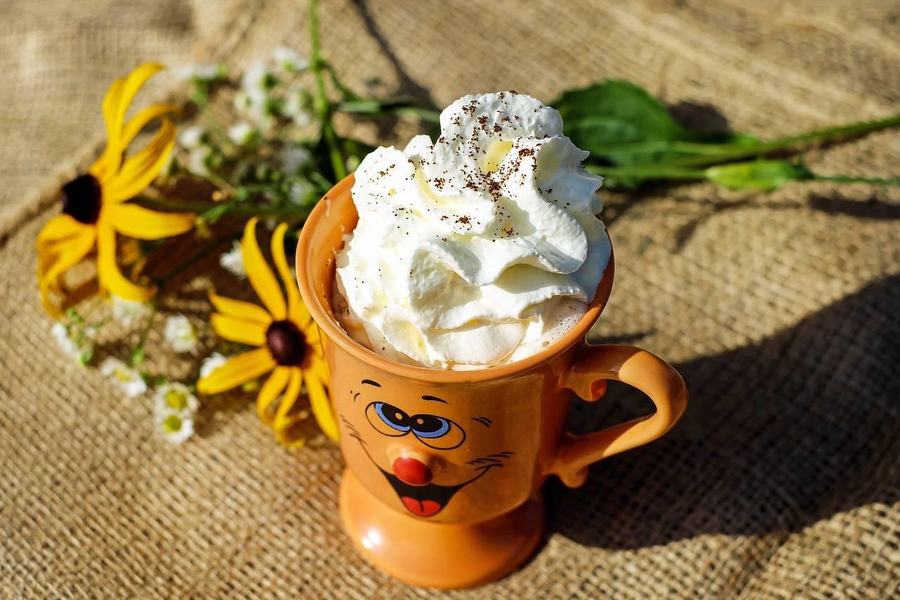 Кофе по-венски, домашние классический и меланж рецепты