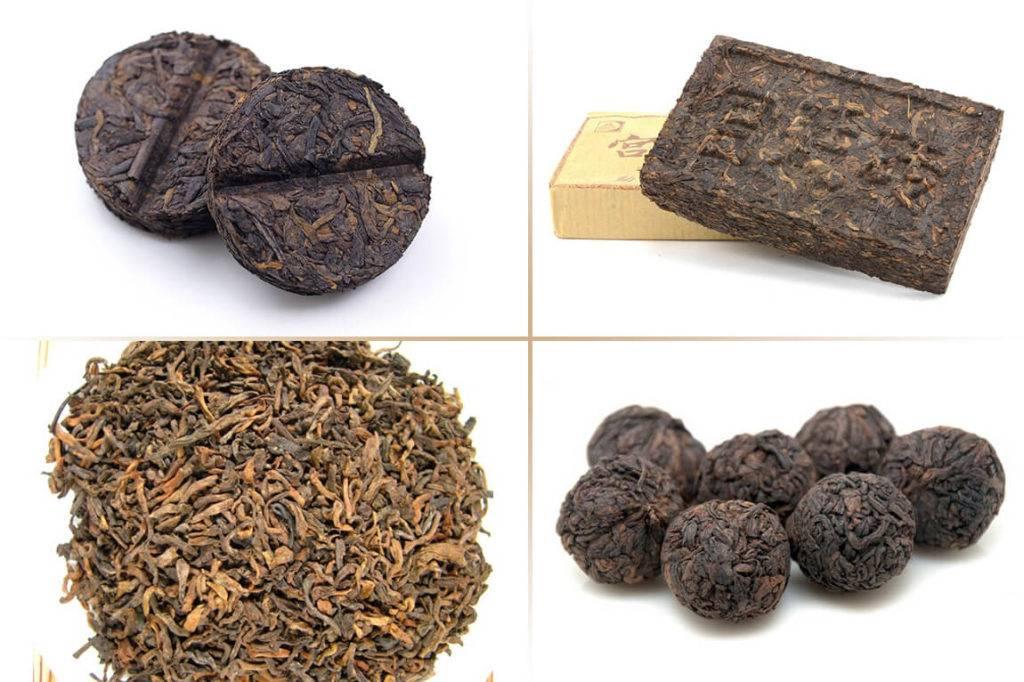Чай пуэр: польза и вред, свойства и противопоказания пуэра