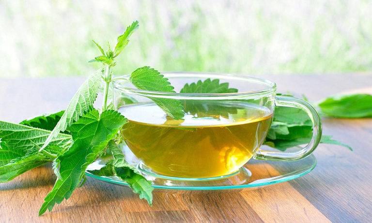 Польза и вред чая с мелиссой