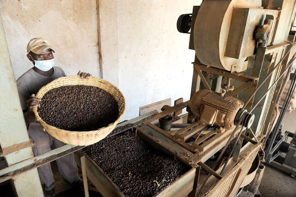 Характеристика перуанского кофе