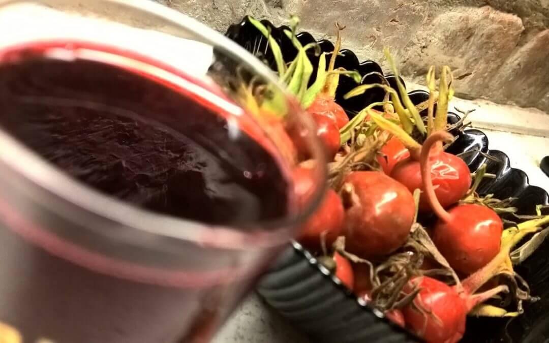Как приготовить отвар шиповника из сухих и свежих плодов?