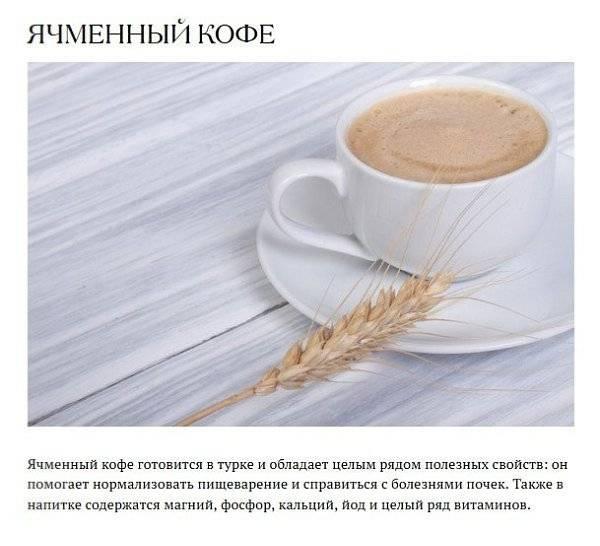 Чем можно заменить кофе: 11 продуктов и напитков, которые стоит попробовать