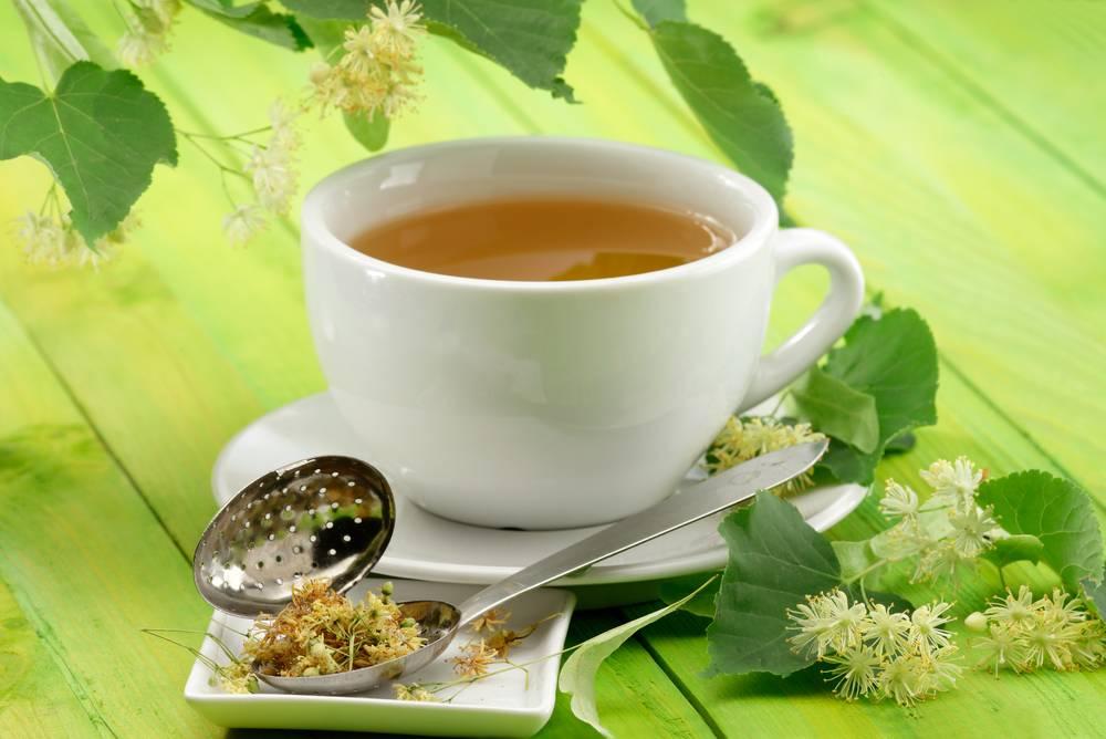 Липовый чай полезные свойства липового чая