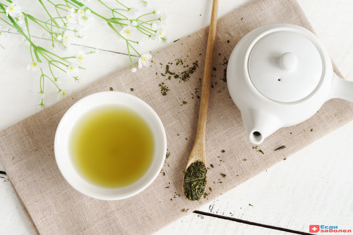 Можно ли при беременности пить зеленый чай: польза и вред напитка для беременных