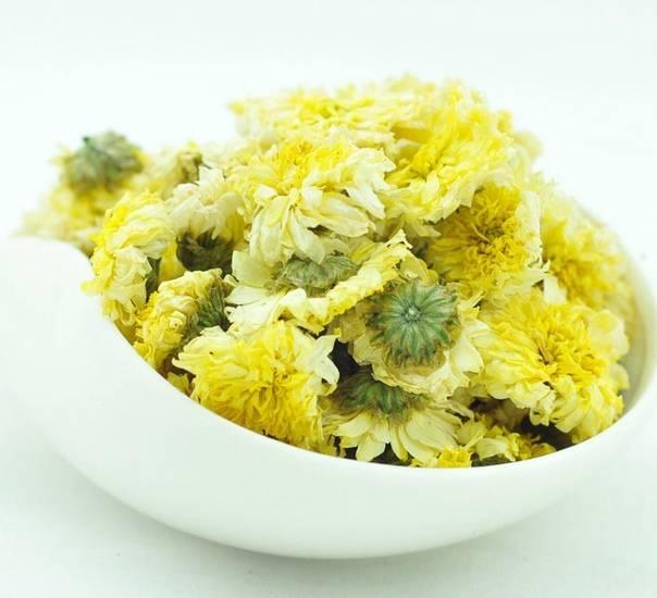 Чай из хризантемы — как заваривать, польза и вред