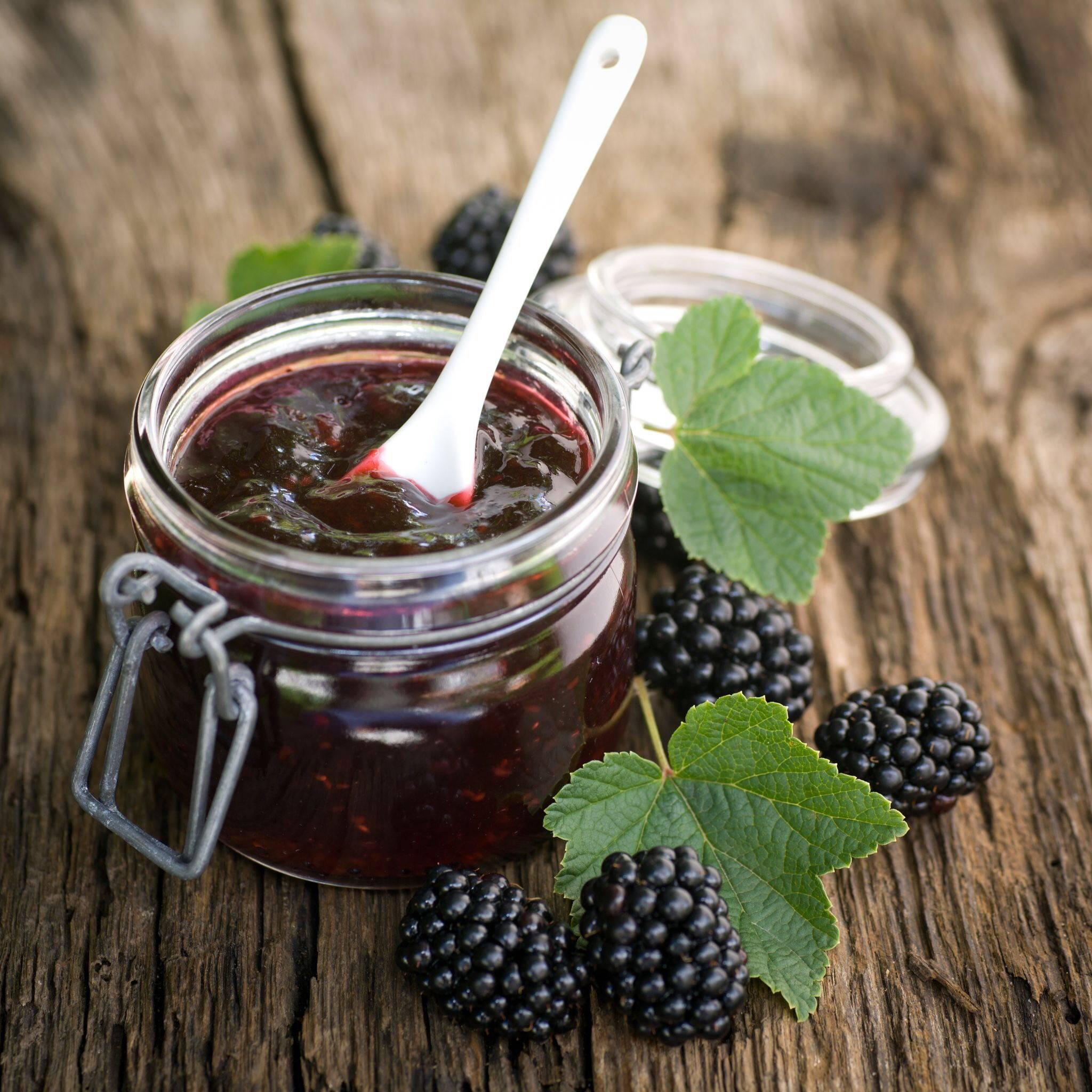 Полезные свойства шелковицы: состав ягод, их польза и вред для организма, противопоказания