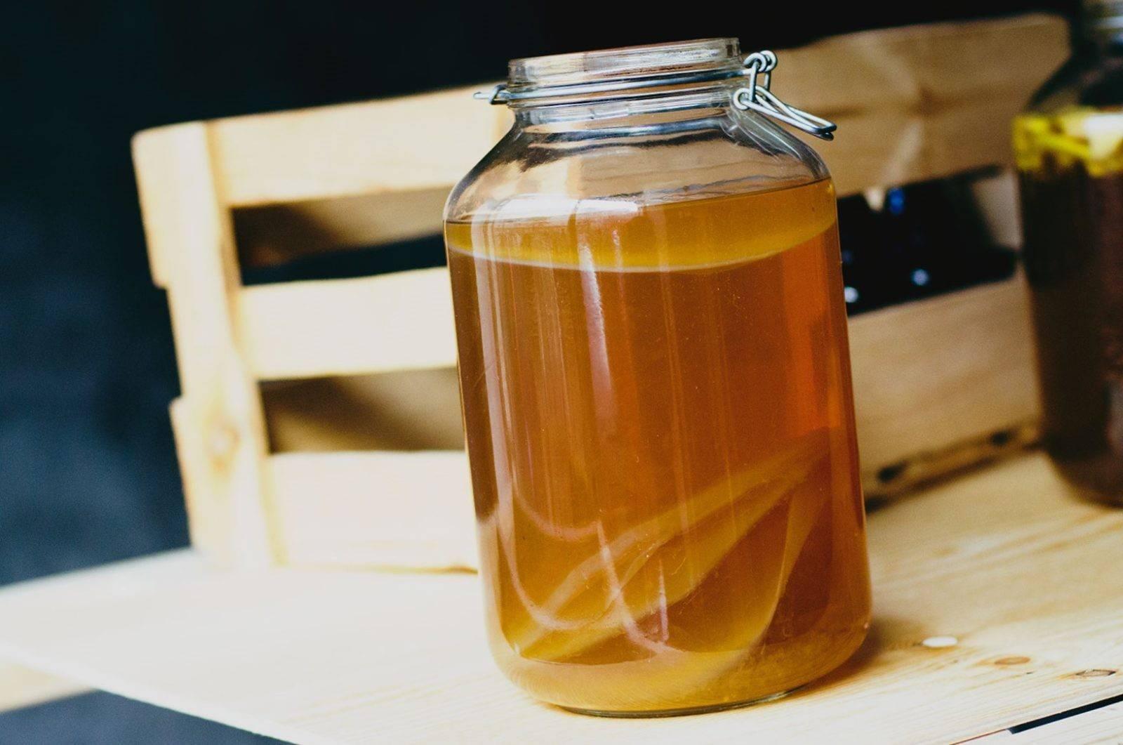 Чайный гриб: полезные и вредные свойства | food and health