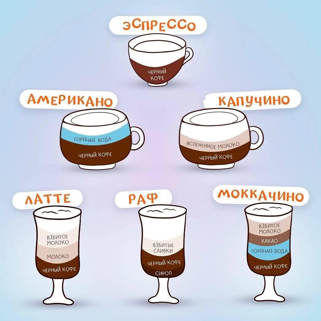 Капучино и мокачино, в чем разница, отличия кофе между собой
