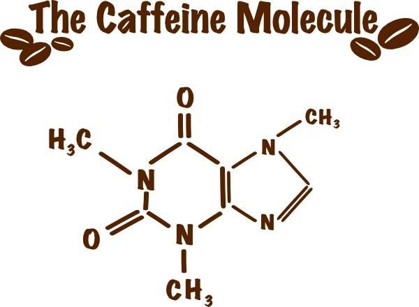 Теобромин — алкалоид из кофе и шоколада