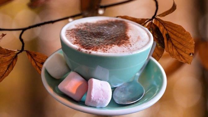 Горячий шоколад зимний вечер рецепт игра кофейня - простые пошаговые рецепты с фотографиями