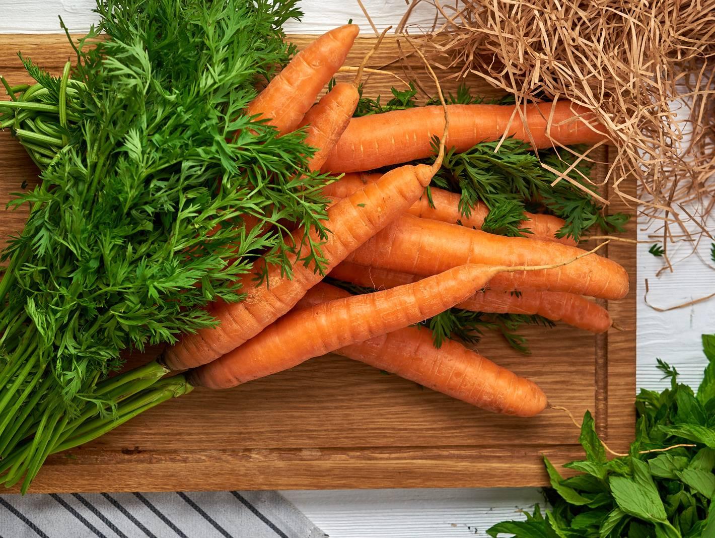 Морковная ботва - лечебные свойства и противопоказания