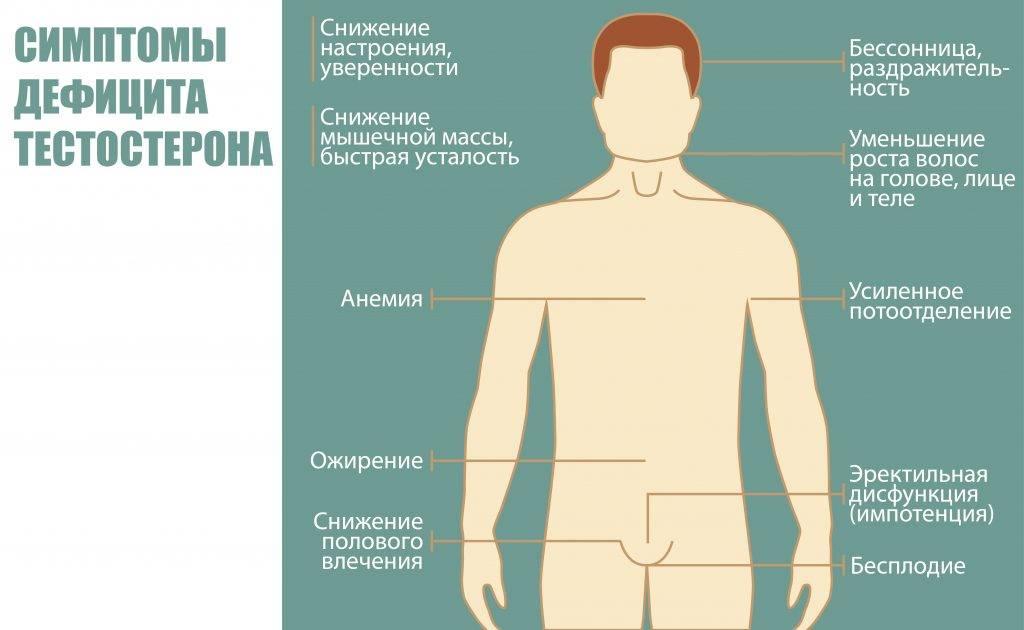 Влияние кофе на тестостерон у мужчин