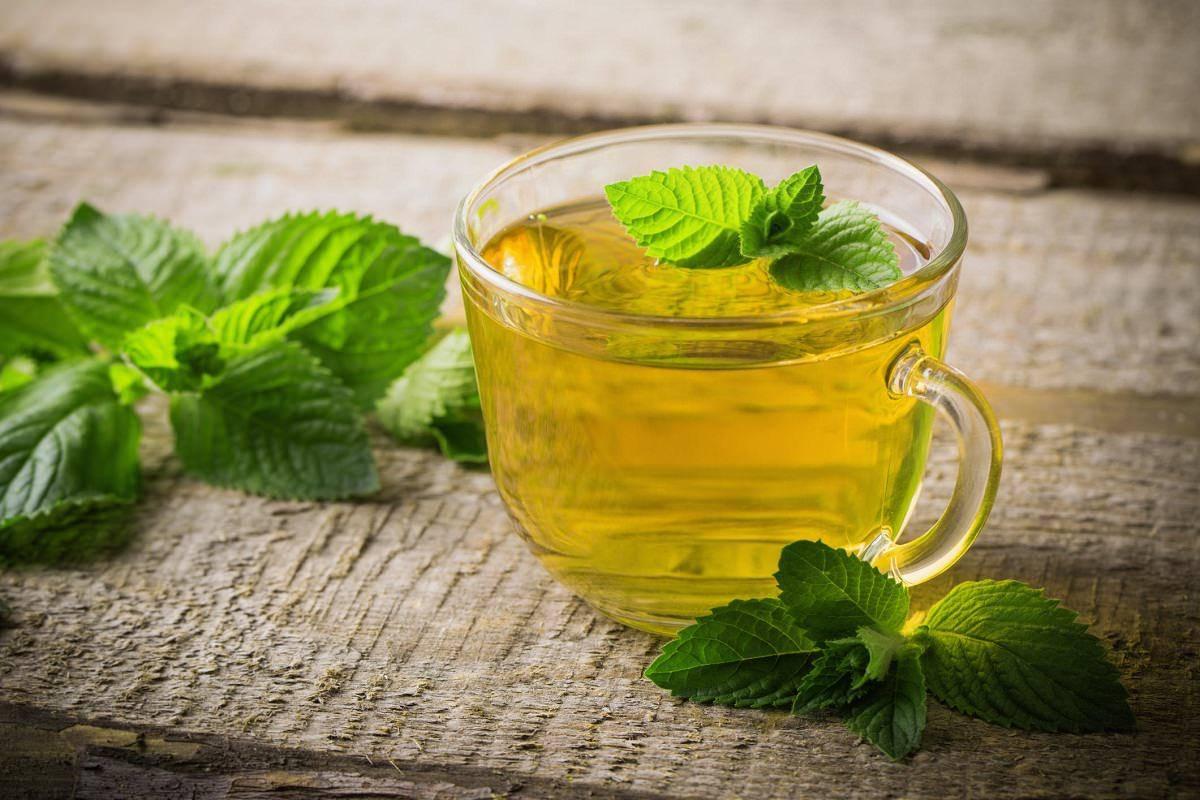 Чай с мятой при беременности: можно ли пить на ранних сроках и во время 3 триместра, как употреблять черный и зеленый, в чем польза и вред?