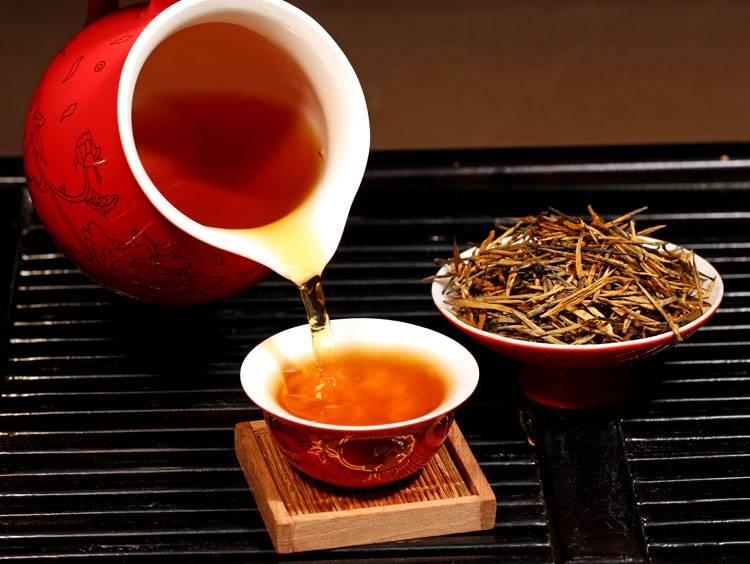 Африканский чай ройбуш (ройбос) — польза и вред, полезные свойства и противопоказания