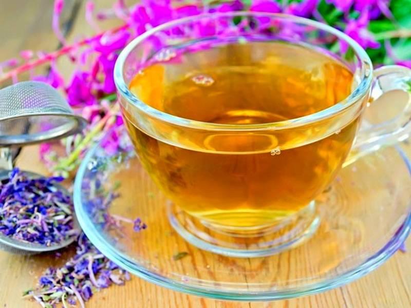 Зверобой с душицей лечебные свойства и противопоказания. полезные свойства травы зверобой для вашего организма. пей зверобойный чай – здоровье привечай!