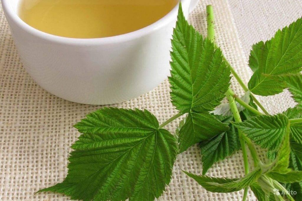 Малиновый лист полезен, душист! заваривай чай и здоровье встречай!