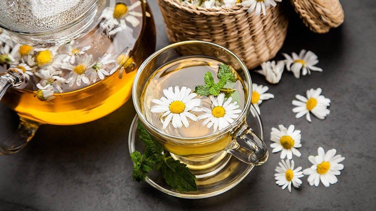 Ромашковый чай: польза, вред, как приготовить чай из ромашки