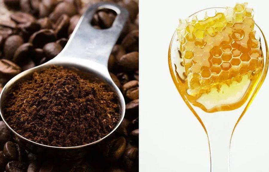 Маска для волос – яйцо и коньяк, мед и оливковое масло